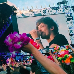 Flower Project, Helsinki (Credits to Owner)